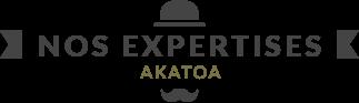 Agance Akatoa : Nos expertises
