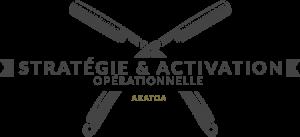 Stratégie & Activation  opérationnelle